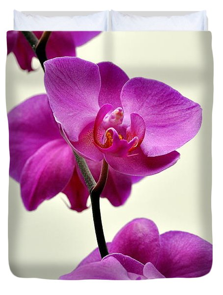 Orchid 26 Duvet Cover by Marty Koch