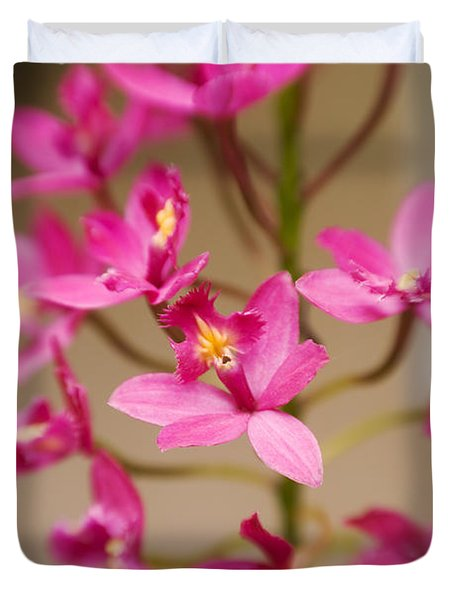 Orchids On Stem Duvet Cover by Ron Dahlquist - Printscapes