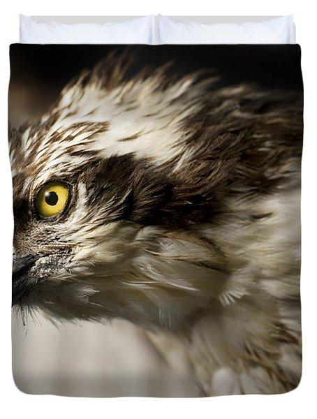 Osprey Duvet Cover by Adam Romanowicz