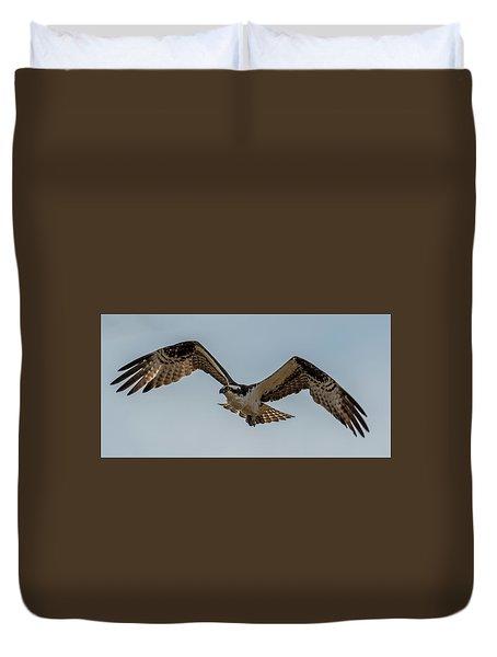 Osprey Flying Duvet Cover by Paul Freidlund