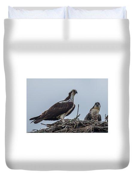 Osprey On A Nest Duvet Cover by Paul Freidlund