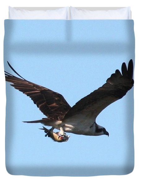 Osprey With Fish Duvet Cover by Carol Groenen