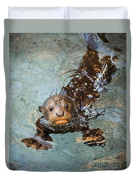 Otter Pup Duvet Cover by Jamie Pham