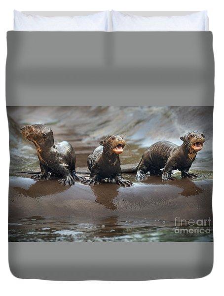 Otter Pup Triplets Duvet Cover by Jamie Pham