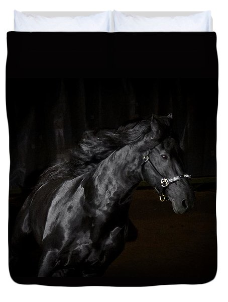 Out Of The Darkness D4367 Duvet Cover by Wes and Dotty Weber