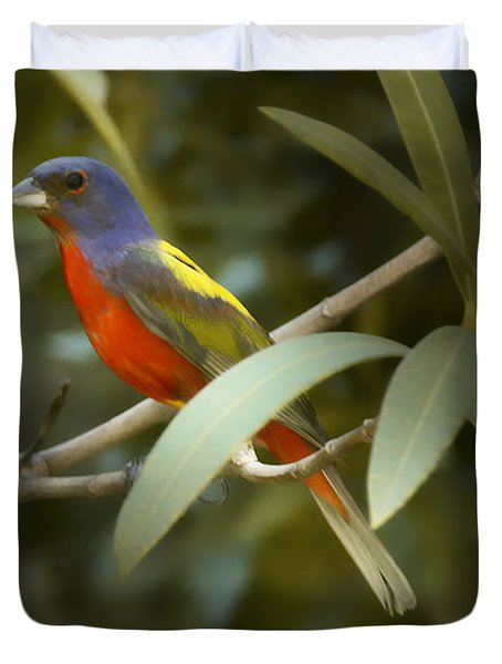 Painted Bunting Male Duvet Cover by Phill Doherty