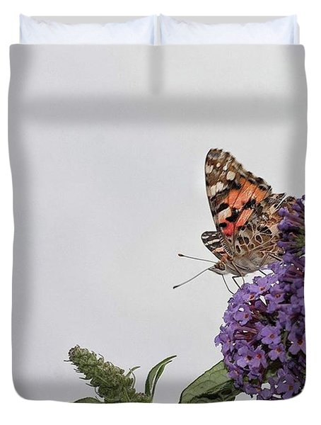 Painted Lady (vanessa Cardui) Duvet Cover by John Edwards