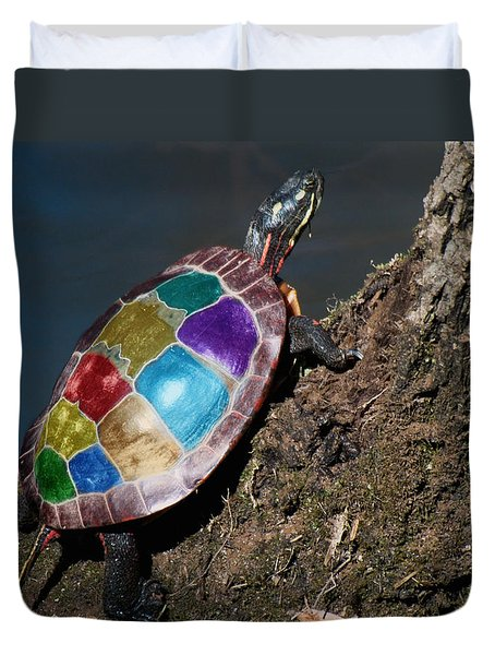 Painted Painted Turtle Duvet Cover by Warren M Gray