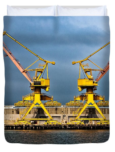 Pair Of Cranes Duvet Cover by Christopher Holmes