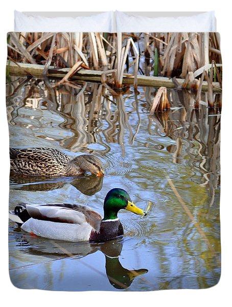Pair Of Mallard Ducks Duvet Cover by Rod Johnson