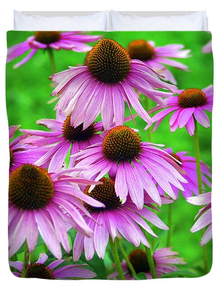 Pale Purple Coneflowers Duvet Cover by Marty Koch