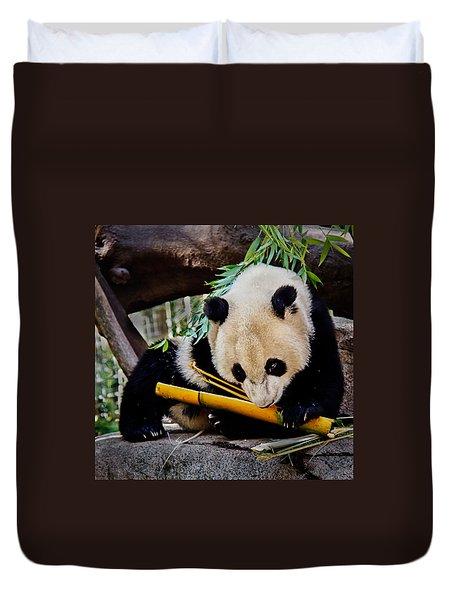 Panda Bear Duvet Cover by Robert Bales