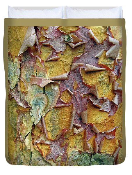 Paperbark Maple Tree Duvet Cover by Jessica Jenney