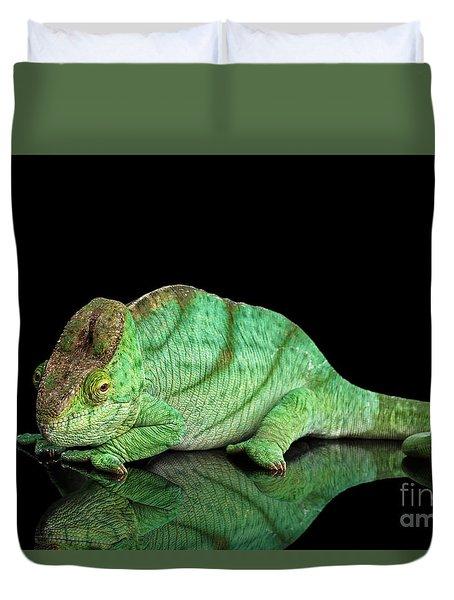 Parson Chameleon, Calumma Parsoni Orange Eye On Black Duvet Cover by Sergey Taran