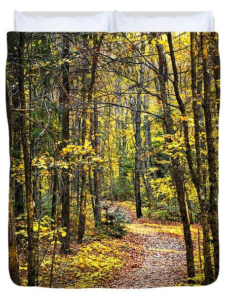 Path in fall forest Duvet Cover by Elena Elisseeva