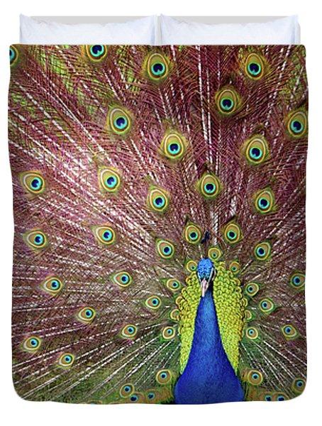 Peacock Duvet Cover by Carlos Caetano