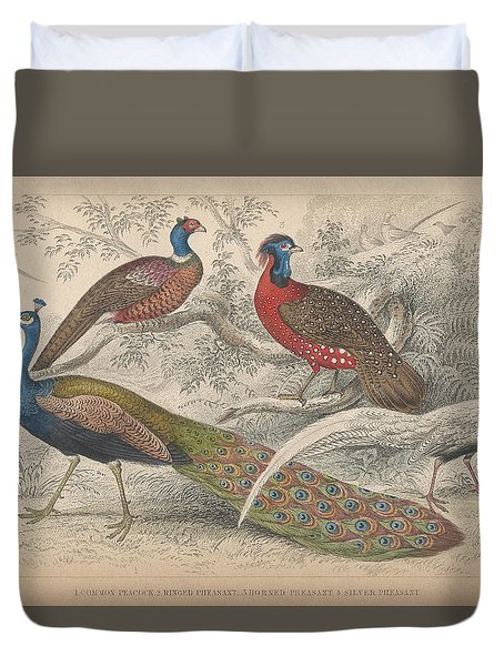 Peacocks Duvet Cover by Oliver Goldsmith