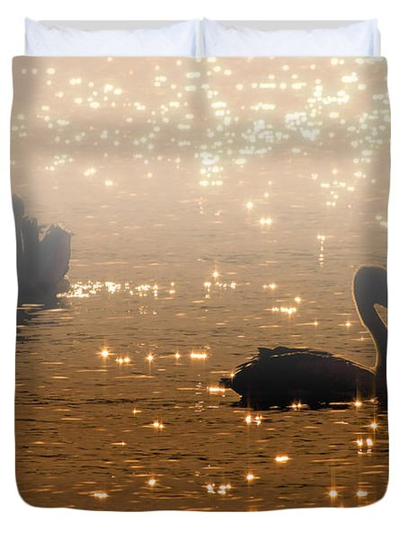 Pelican Sunrise Duvet Cover by Mike  Dawson