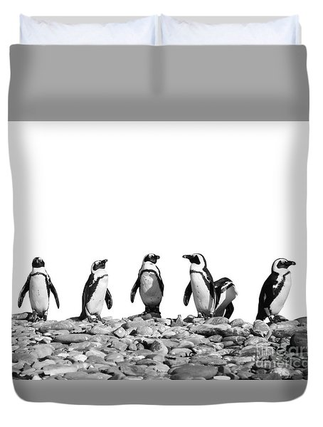 Penguins Duvet Cover by Delphimages Photo Creations