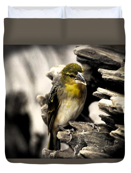 Perched Duvet Cover by Martin Newman