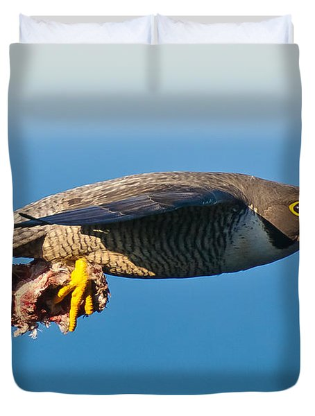 Peregrine Falcon 2 Duvet Cover by Michael  Nau