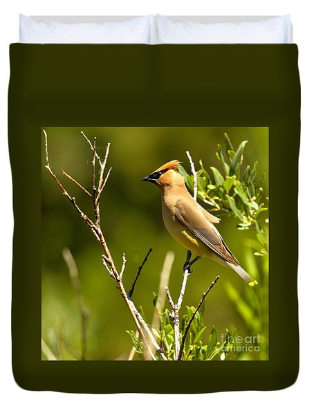 Perfectly Perched Duvet Cover by Adam Jewell