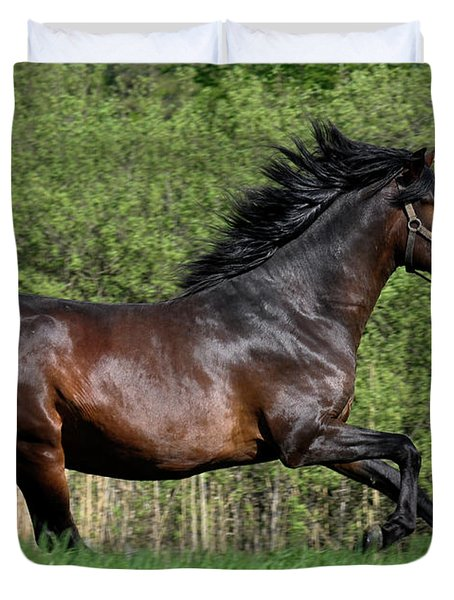 Peruvian Paso Duvet Cover by Michael Mogensen