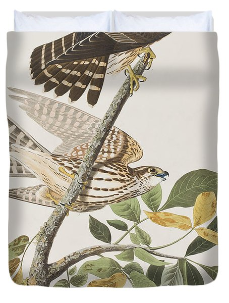 Pigeon Hawk Duvet Cover by John James Audubon