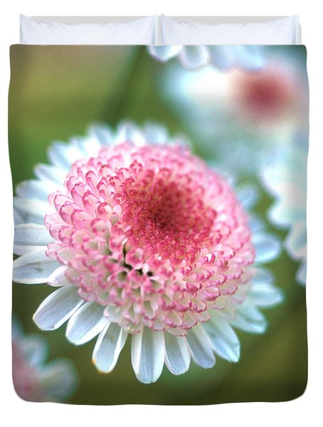 Pincushion Flowers Duvet Cover by Kathy Yates
