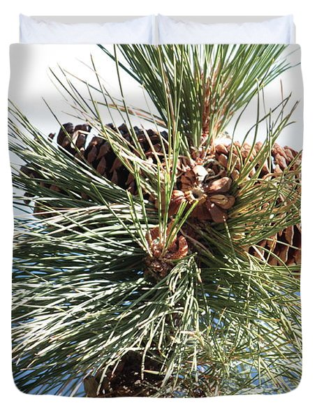 Pine Cones Over Lake Tahoe Duvet Cover by Carol Groenen