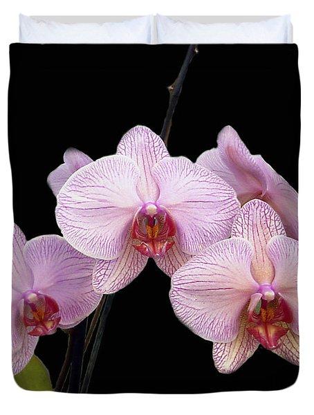 Pink Orchids Duvet Cover by Kurt Van Wagner
