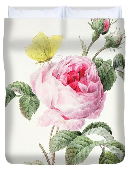 Pink Rose With Buds And A Brimstone Butterfly Duvet Cover by Louise DOrleans