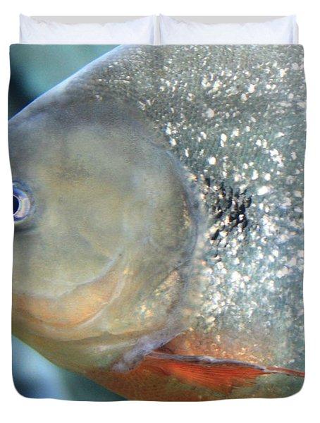 Piranha Tough Guy Duvet Cover by Carol Groenen