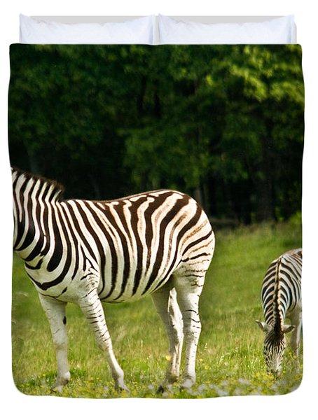 Plains Zebra 1 Duvet Cover by Douglas Barnett