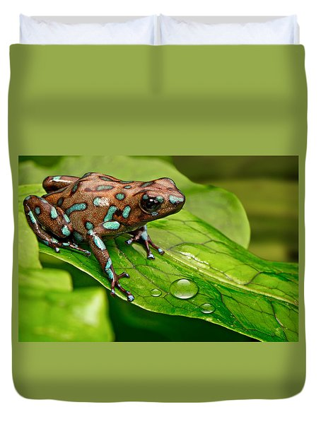 poison art frog Panama Duvet Cover by Dirk Ercken