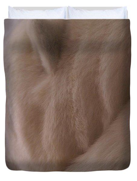 Polar Dream Duvet Cover by Linda Knorr Shafer