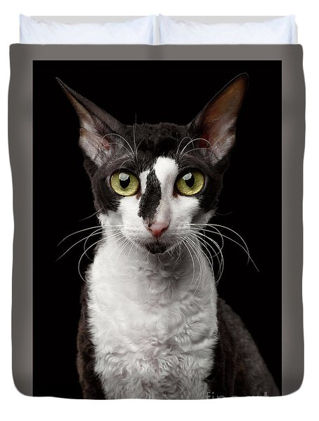 Portrait Of Cornish Rex Looking In Camera Isolated On Black  Duvet Cover by Sergey Taran