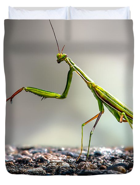 Praying Mantis Duvet Cover by Bob Orsillo