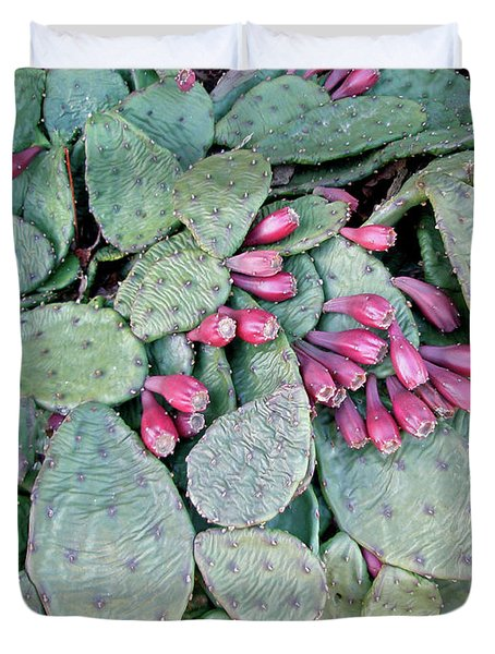 Prickly Pear Cactus Fruits Duvet Cover by Mother Nature