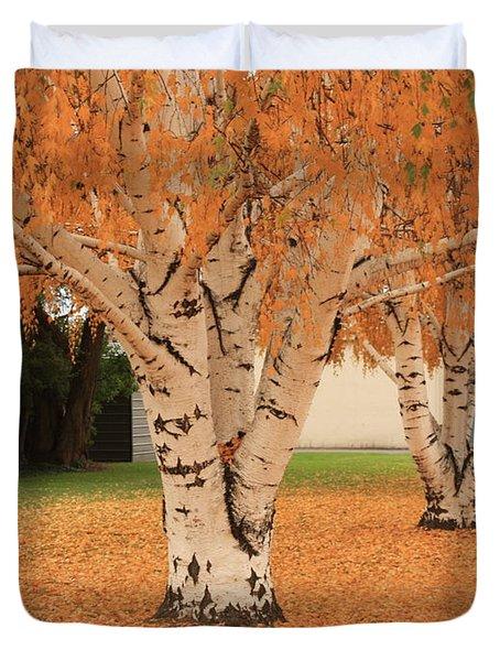 Prosser - Autumn Birch Trees Duvet Cover by Carol Groenen