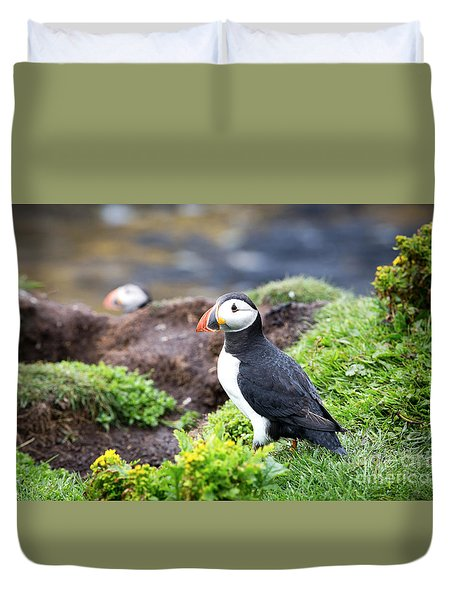 Puffin  Duvet Cover by Jane Rix