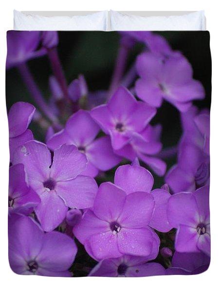 Purple Blossoms Duvet Cover by David Lane