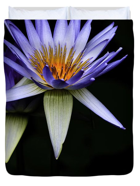 Purple Waterlily Duvet Cover by Avalon Fine Art Photography