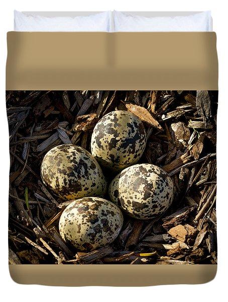 Quartet Of Killdeer Eggs By Jean Noren Duvet Cover by Jean Noren
