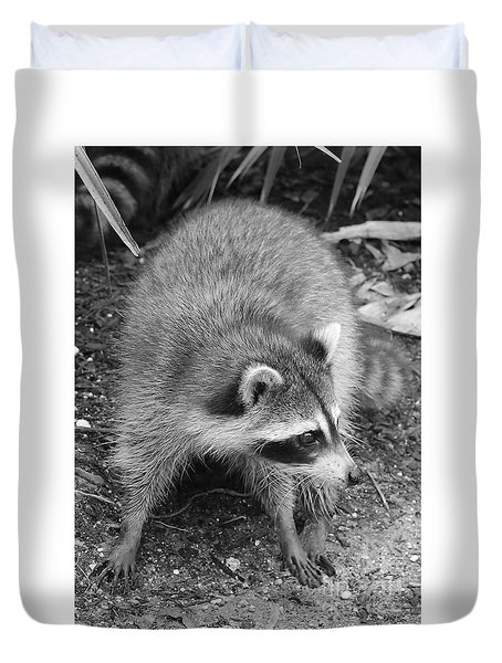 Raccoon - Black And White Duvet Cover by Carol Groenen