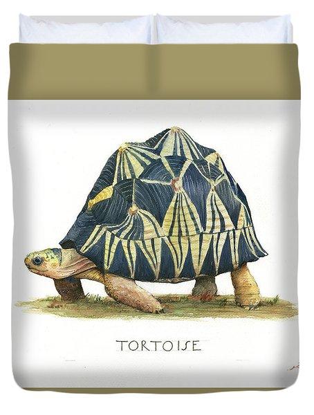 Radiated Tortoise  Duvet Cover by Juan Bosco