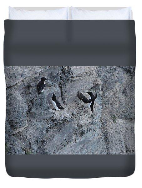Razorbill Landing Duvet Cover by John Meader