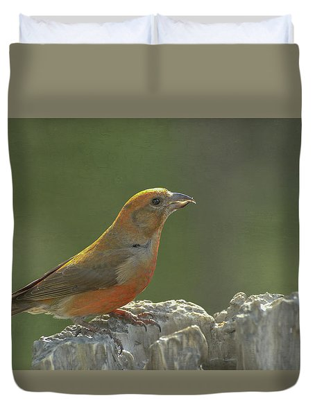 Red Crossbill Duvet Cover by Constance Puttkemery