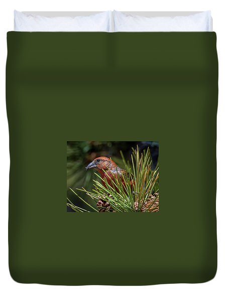 Red Crossbill Duvet Cover by Michael Cunningham