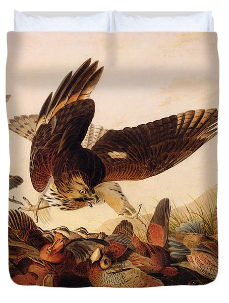 Red Shouldered Hawk Attacking Bobwhite Partridge Duvet Cover by John James Audubon